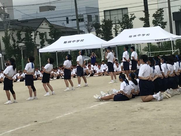 9.13 梅林  (4)