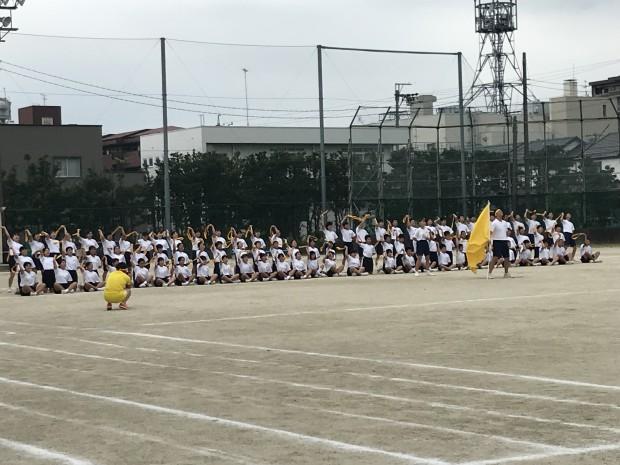 9.13 梅林  (7)