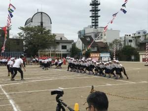 9.22 徹明さくら (11)